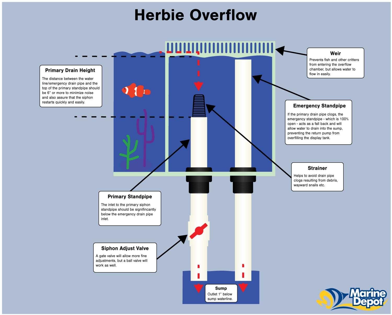 Herbie-1.