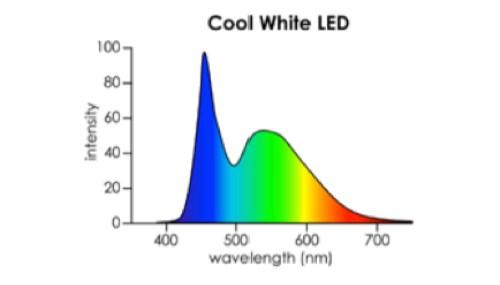 LED-Blanco.