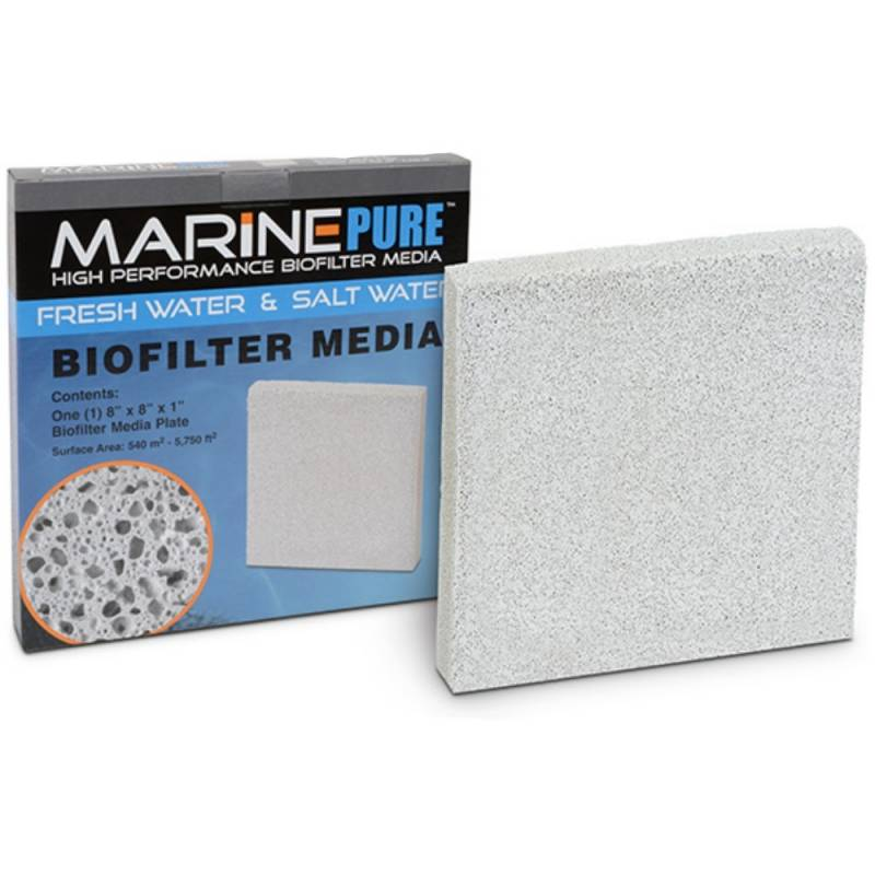 marine-pure-plate-20x20x25-cm.