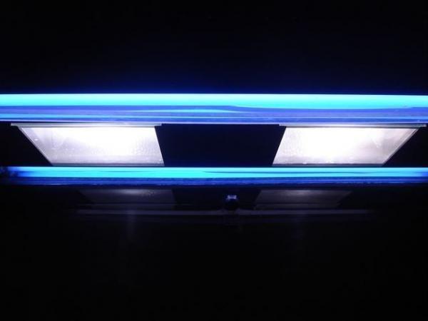 Luz: HQI 2 de 150 W        4 T5HO  Actinicas        18  Lunares