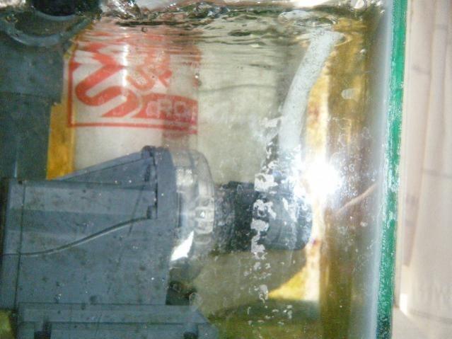 DSCF4151 mi nuevo skimmer excelente trato rateado para el  doble de la capacidad en litros de mi acu