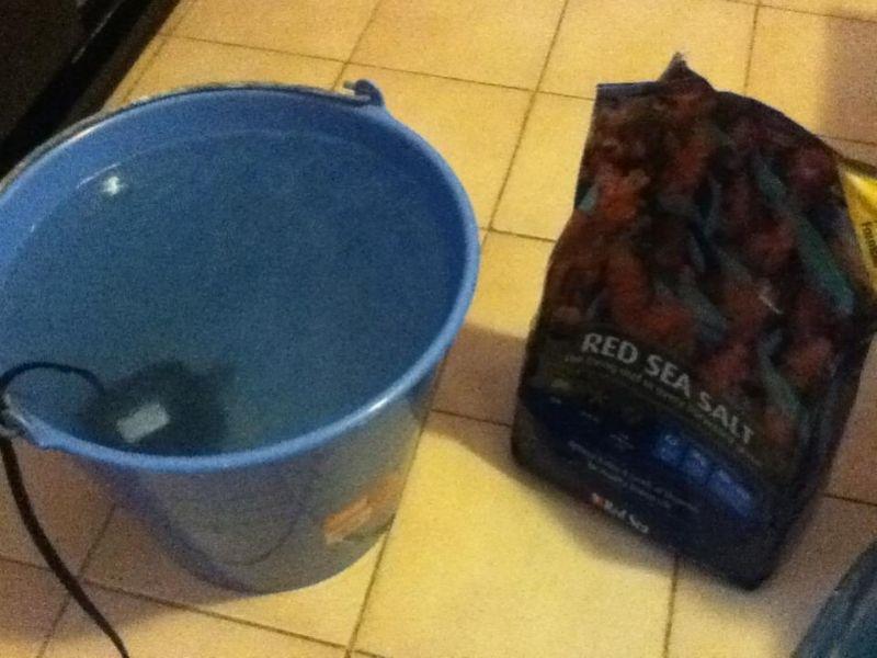 Preparando el agua poco a poco.